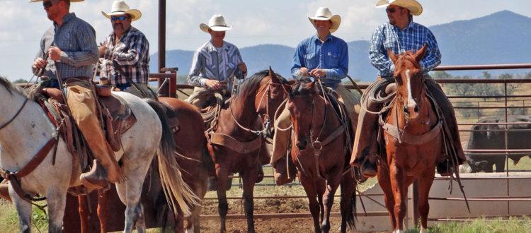 Ranchers on horseback