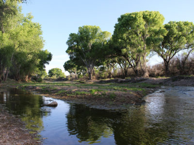 San Pedro River. Photo courtesy BLM.