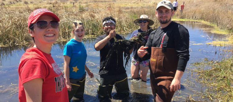 First Volunteer Day at Las Cienega National Conservation Area a Muddy Success